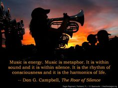 Music is energy. Music is metaphor. It is within sound and it is within silence. It is the rhythm of consciousness and it is the harmonics of life. - Don Campbell