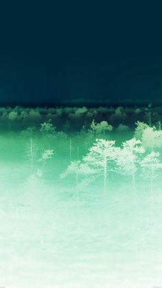 Sunset Wood Nature Ghost #iPhone #6 #plus #wallpaper