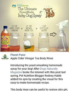 Diy dog shampoo for itchy skin coconut oil Best Ideas Diy dog shampoo for itchy skin coconut oil Best Ideas,Kriket Diy dog shampoo for itchy skin coconut oil Best Ideas Dog Itchy Skin Remedy, Dry Skin Remedies, Coconut Oil For Dogs, Coconut Oil For Skin, Diy Tumblr, Diy Dog Shampoo, Dog Skin Allergies, Cheap Pet Insurance, Oils For Dogs
