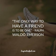 Amazing Quotes About Friendship Stunning 40 Friendship Quotes To Celebrate Your Friends  Friendship Quotes