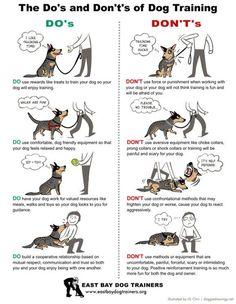 DOG TRAINING TIPS 48