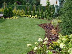 Mój Piękny Ogród - strona 28 - Forum ogrodnicze - Ogrodowisko