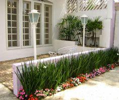 Ideais para bordaduras ou touceiras localizadas. Características Essa planta dificilmente atinge um metro de altura, é ex...