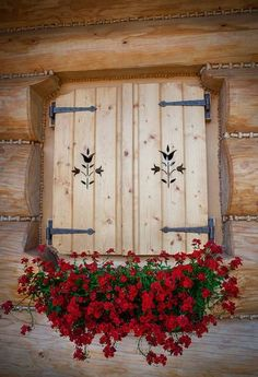 Pretty Shutter Window and flowers