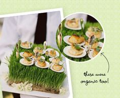 Go Green! Go Eco Friendly! Go Organic! and make your guests love those goodies!