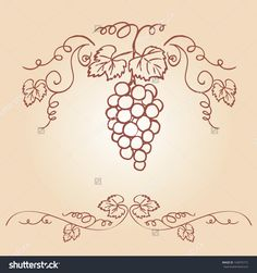 Decorative grapes & vine vector ornament