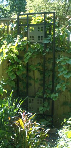 1000 images about fence ideas on pinterest fence for Craftsman style trellis