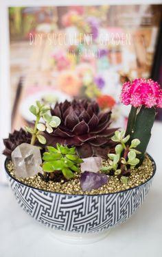 So easy! Make a #DIY succulent garden - easy to create, easy to maintain!