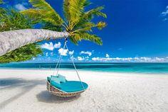Beach Swing, Beach Fun, Hammock Swing, Countries Around The World, Around The Worlds, Fiji Islands, Beach Background, Summer Landscape, Beach Scenes