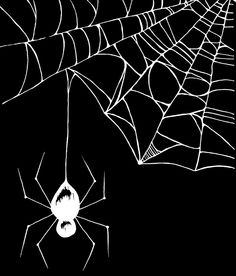 Spider White Art Print | Spider Web | Drawing | Illustration
