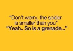 Don't Worry The Spider Is Smaller