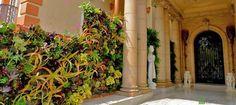 دیوارهای عمودی سبز؛تکنولوژی منحصر به فرد در نما