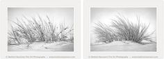 TWO of my new Black and white images..beautiful together. Soft, gentle..serene..I am enjoying my new range. Takes you to another place if you stare at them long enough..try it. Deeply tranquil...we could all do with a little more stillness.. My GIFT to you today...Love Marlene
