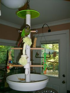 An aviary is a shed or cage like construction designed as a living space for wild or domesticated fowl. Given that birds are used to flying free in their natural habitat it is important to recreate as best we can this kind of environm Diy Bird Cage, Bird Cages, Parrot Stand, Bird Stand, Diy Bird Toys, Budgies, Cockatiel, Parrots, African Grey Parrot