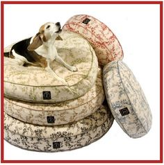 For a pampered pooch! Comes in rectangular as well.