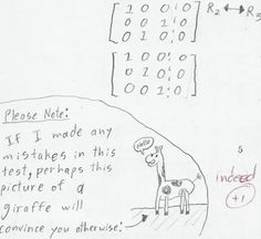 Hilarious Teacher Reply - Girraffe scores a point