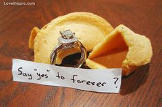 Fortune cookie engagement love quotes cute photography wedding marriage ring