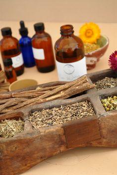 a herbal medicine cabinet