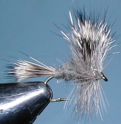 Gray Wulff trout fly