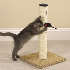 Meow Town Scratch N' Stow Cat Scratching Post for Cats and Kittens - Tan 12'L x 12' W x 21'H *** You can find more details by visiting the image link.