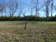 This one has a beach! Waterfront River Lot! Great place to build or weekend get-away! Just 3 miles from Savannah, close to boat ramp. Utilities available. Priced below tax appraisal! in Savannah TN