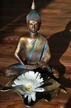 """""""Let none find fault with others; let none see the omissions and commissions of others. But let one see one's own acts, done and undone."""" ~ The Buddha lis Buddha Buddhism, Buddha Art, Lotus Buddha, Buda Zen, Statues, Buddha Decor, Little Buddha, Buddhist Philosophy, Mystique"""