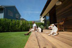 緑の芝生を走り回り、広いデッキで日向ぼっこ。ピットブルのキクとマナには最高の環境。 Japanese Style House, Some Jokes, Dog Care, Lawn And Garden, Country Life, Terrace, New Homes, Deck, Exterior