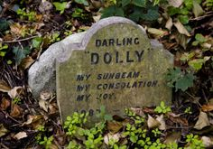 Hyde Park Pet Cemetery // This is why I love the English people. <3 <3 <3
