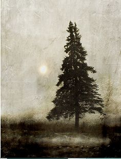 """Winter Light"" - 2010 - by Jamie Heiden Mountain Photography, Art Photography, Camping Photography, Art Brut, Guache, Tree Art, Belle Photo, Painting & Drawing, Encaustic Painting"