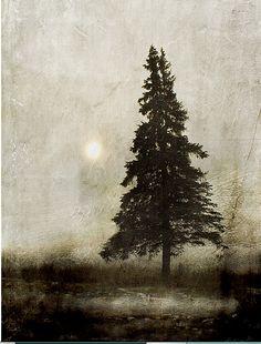 Winter Light by Jamie Heiden
