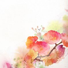 Watercolor Painting Cherry Blossom