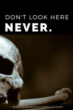 #skull #skullreplica #human #bone #skeleton #calavera #tattoo #inked #skullart #photography #instaskulls #metal #grave #shot #shotglasses #scarynotscary #beautiful #life #death #kutnahora #czechrepublic #czechquality #kostnice #oldage #nothingisforever #mementomori Skull Decor, Skull Art, Calavera Tattoo, Skull Model, Human Skull, Skull Design, Halloween Skull, Memento Mori, Beautiful Life