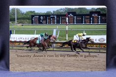 Insanity doesn't run in our family, it gallops. Funny plaque sign for home or office. Great horse race finish line photo, a funny message and a gift plaque all in one gift!  Absolute Inspirations ® gift store.  $17.00 (http://www.inspirationalgiftstore.com/funny-gift-plaques-insanity-doesnt-run-in-my-family-it-gallops/)