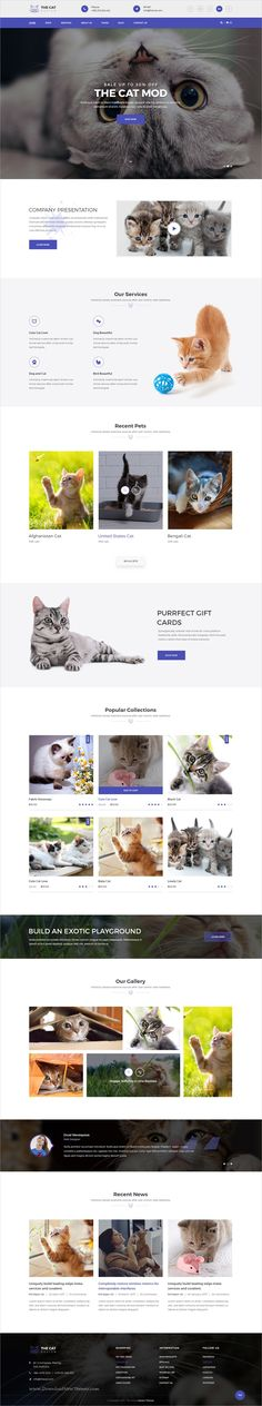 Buy The Cat - PSD Template for Pet Shop and Care Organisations by decentthemes on ThemeForest. The Cat is designed for every pet shop and pet care organization. The Cat comes with every design you need to running. Web Animal, Care Organization, About Us Page, Web Themes, Blog Design, Pet Shop, Psd Templates, Pet Care, Pets