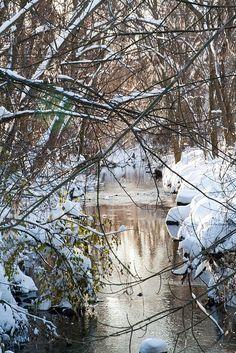 winter stream, beautiful