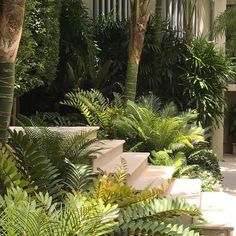 15 Best Tropical Shade Gardening Ideas – How To Create A Tropical Shade Garden Home Landscaping, Tropical Landscaping, Landscaping With Rocks, Back Gardens, Small Gardens, Outdoor Gardens, Indoor Outdoor, Vertical Gardens, Tropical Garden Design