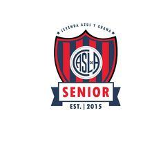 Diseño con el cual se acompaña un nuevo concepto, San Lorenzo Senior, partiendo de los colores y formas tradicionales del club, creando así una identidad significativa.