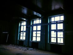Windows, Strip Lights, And Birds | Social Nightmare