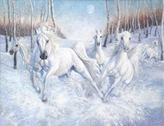 White Horses in the Snow | galloping white horses