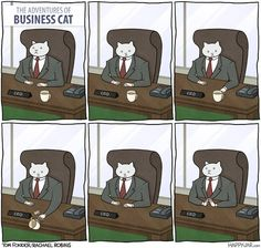 Happyjar's The Adventures of Business Cat | 24 Funny Comics Guaranteed To Brighten Your Day