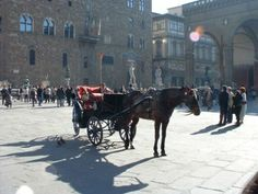 The Best Guided Tour of Florence