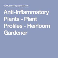 Anti-Inflammatory Plants - Plant Profiles - Heirloom Gardener