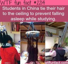 Students in China - WTF fun facts
