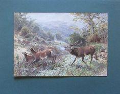 Christian Kröner: Treibender Hirsch - Reproduktion Druck deutsche Kunst print Moose Art, Animals, Ebay, Wild Animals, German, Poster, Printing, Art, Animais