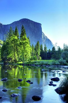 Valley View Morning.  El Capitan and the Merced River, Yosemite National Park