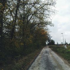 #road #autumn #sky #trees #forest