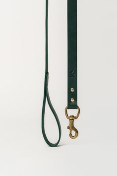 Leather Dog Lead, Green
