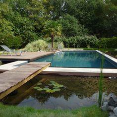 Une piscine écologique avec plage et ponton en bois