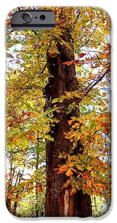 Leaves IPhone 6s Case featuring the photograph Fifty Shades Of Autumn - 8. by Erika H