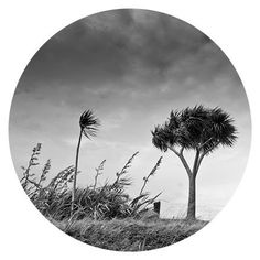 Art Spot - Black and White Landscape - Industria